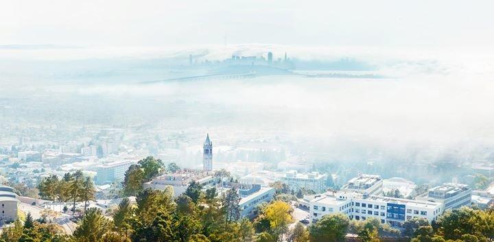 UC Berkeley cover
