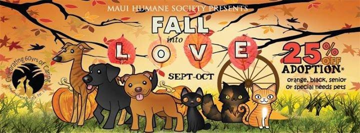 Maui Humane Society cover