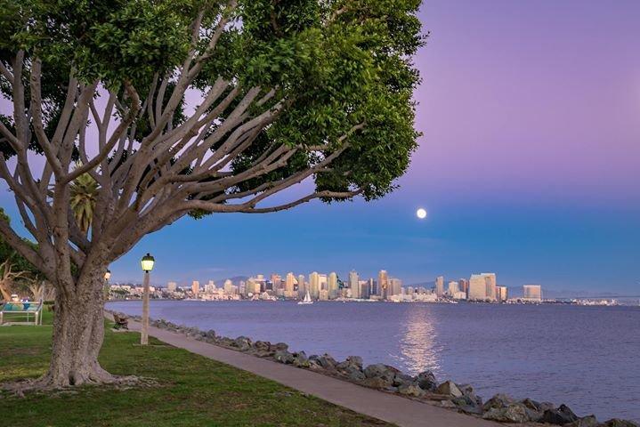 Hilton San Diego Airport/ Harbor Island cover