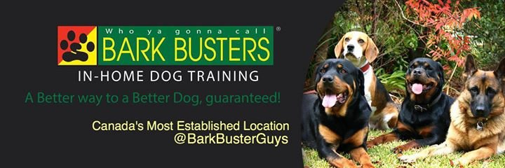 Bark Busters Edmonton - Dog Training Edmonton cover