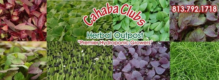 Cahaba Clubs Herbal Outpost cover