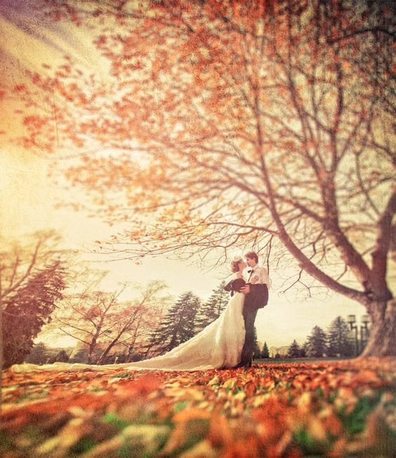 Schoen's Bridal World cover