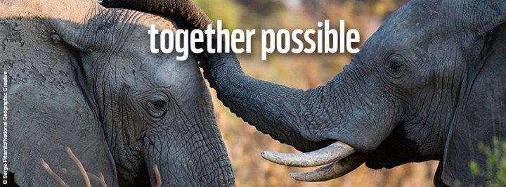 World Wildlife Fund cover