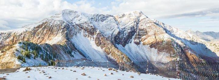 Snowbird cover