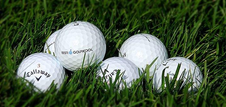 Eesti Golfikool cover