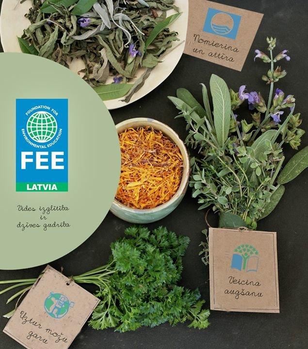 Vides izglītības fonds (FEE Latvia) cover