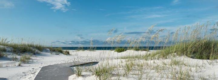 BeachGuide cover