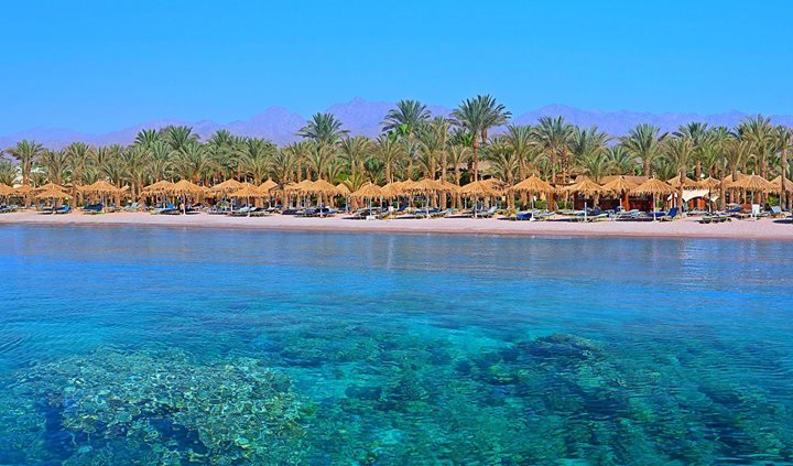 Hilton Sharm El Sheikh Fayrouz Resort cover