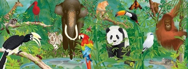 Wildlife Reserves Singapore cover