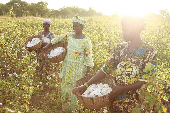 Fairtrade Foundation cover
