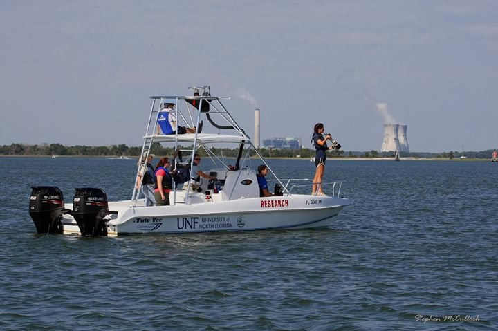 UNF Marine Mammal Research Team cover