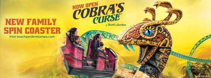 Busch Gardens Tampa Bay cover