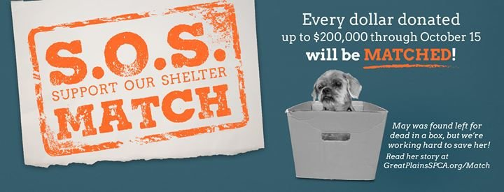 Great Plains SPCA cover