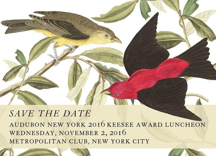 Audubon New York cover