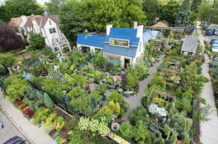 Tangletown Gardens cover