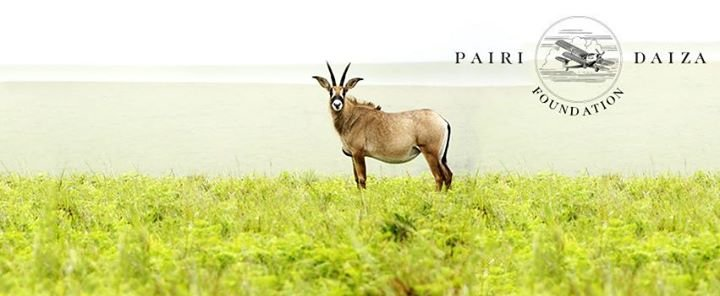 Pairi Daiza Foundation cover