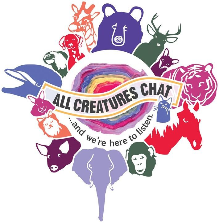 All Creatures Chat cover