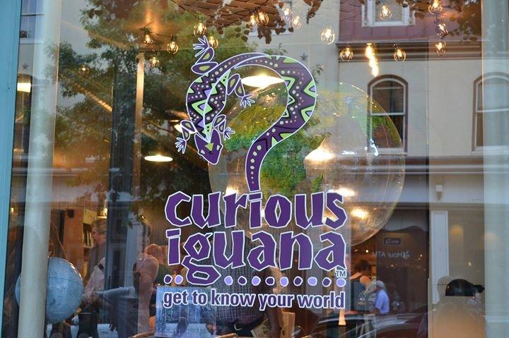 Curious Iguana cover