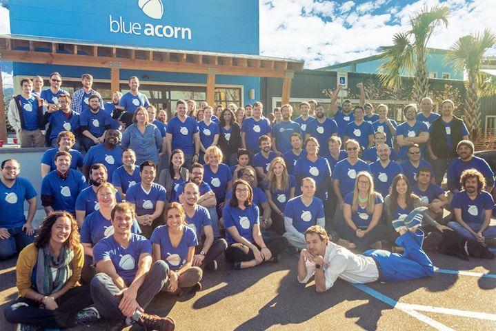 Blue Acorn ICI cover
