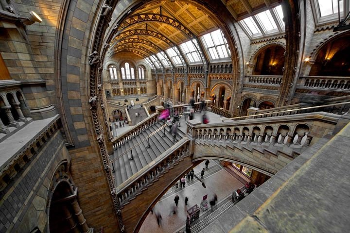 Natural History Museum, London cover