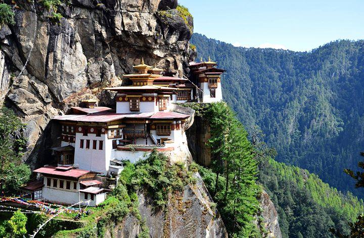 Little Bhutan cover