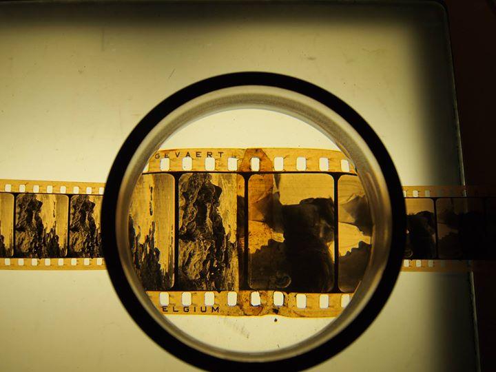 La Cinémathèque de Toulouse cover