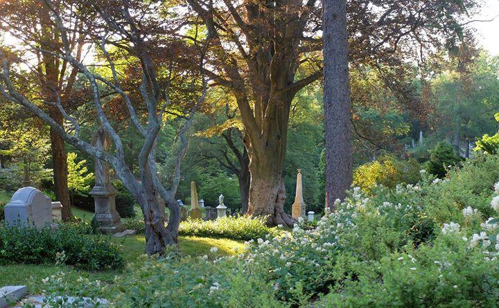 Mount Auburn Cemetery cover