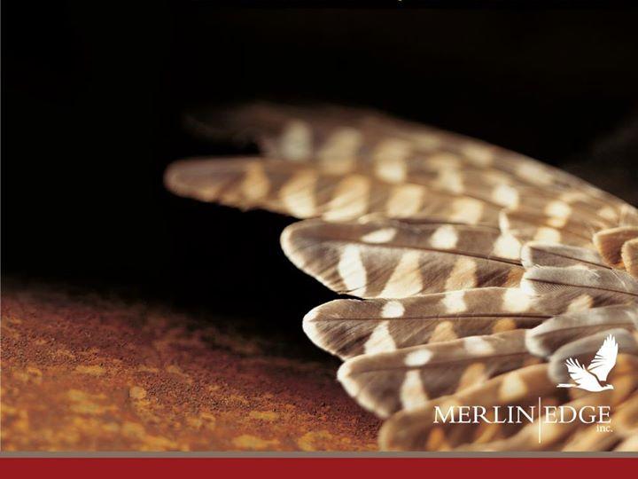 Merlin Edge Inc. cover