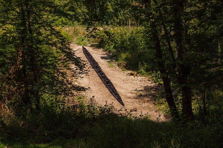 Vent des Forêts cover
