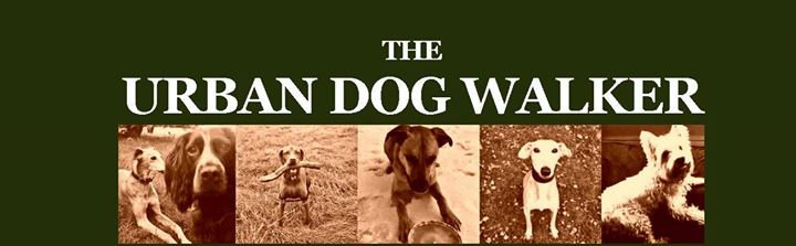 The Urban Dog Walker cover