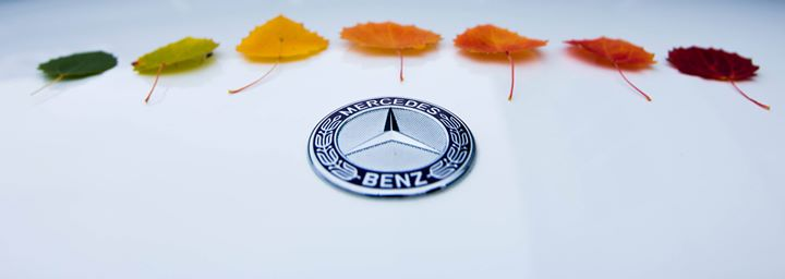 Lone Star Mercedes-Benz cover