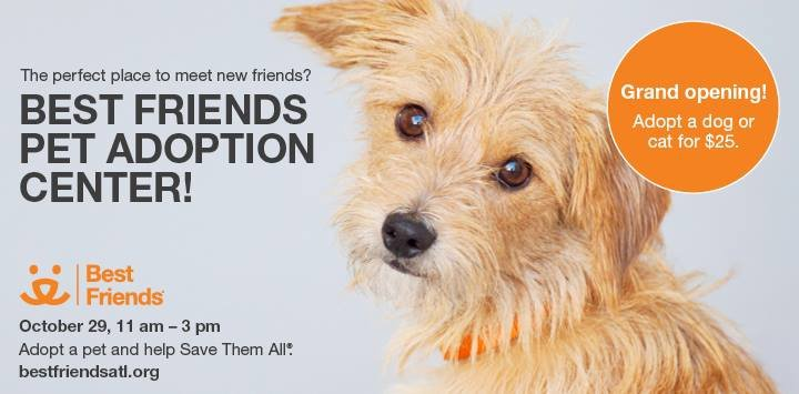 Best Friends Pet Adoption Center cover
