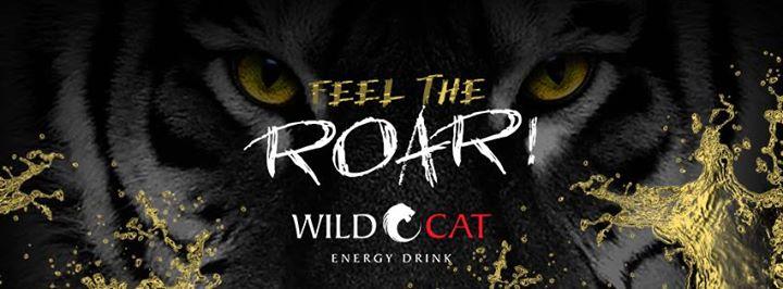 WildCat Energy Drinks USA cover