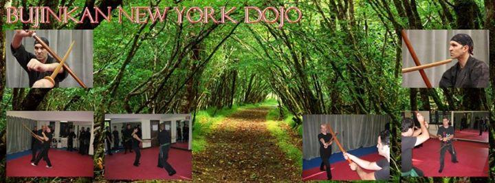 Bujinkan New York Dojo cover