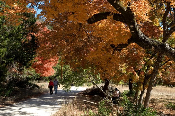 Texas Hill Country Trail cover