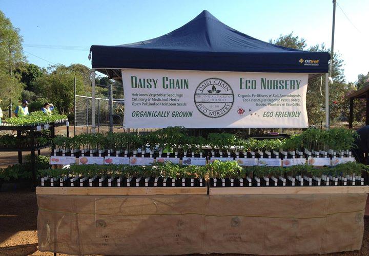 Daisy Chain Eco Nursery cover