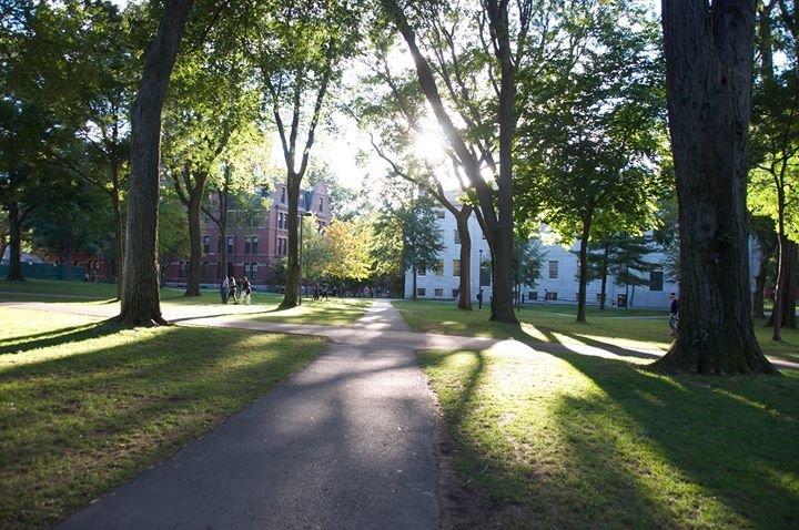 Harvard Extension School cover
