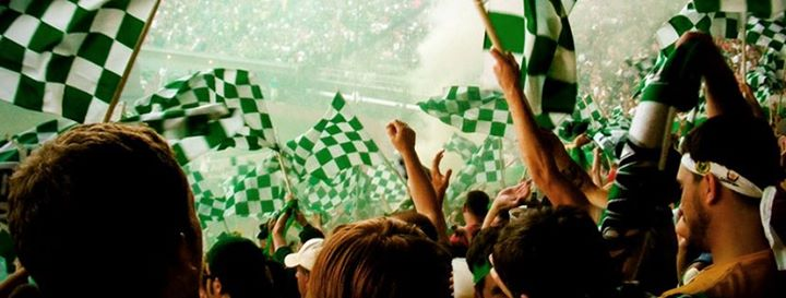 Timbers Army cover