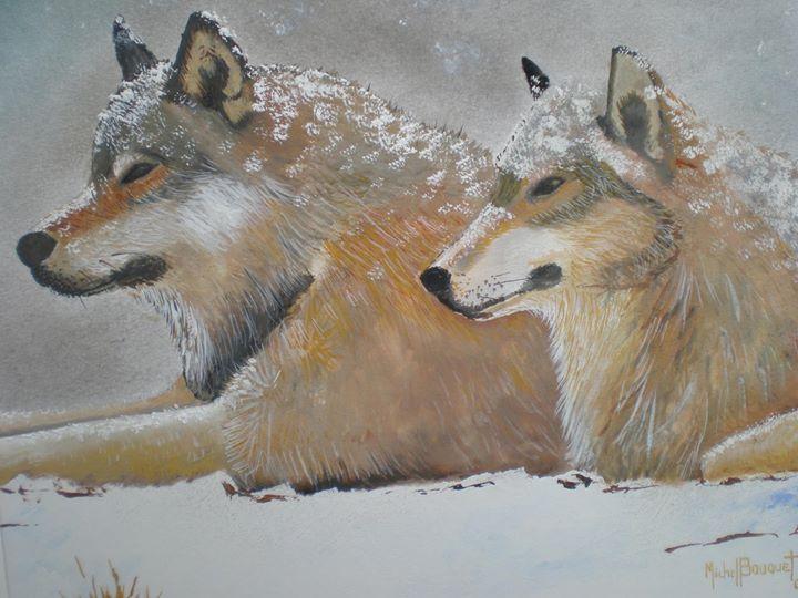 Musée du Loup cover