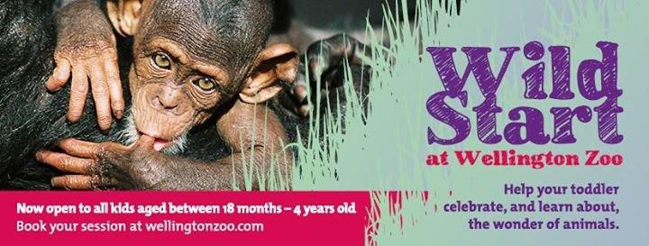 Wellington Zoo cover