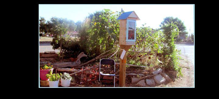 Little Free Library Mesa Verde Cortez cover