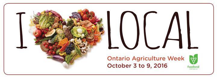 Sustain Ontario cover