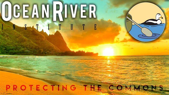 Ocean River Institute cover