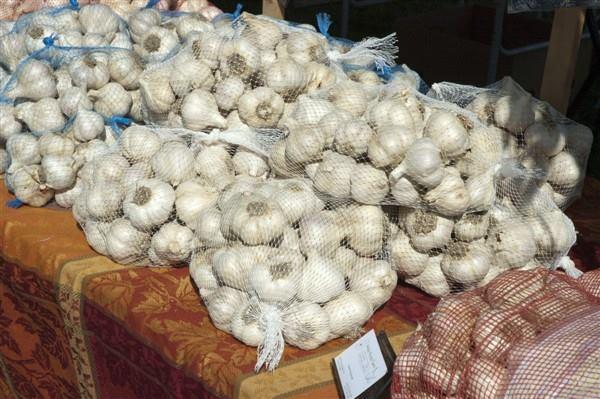 Hudson Valley Garlic Festival cover