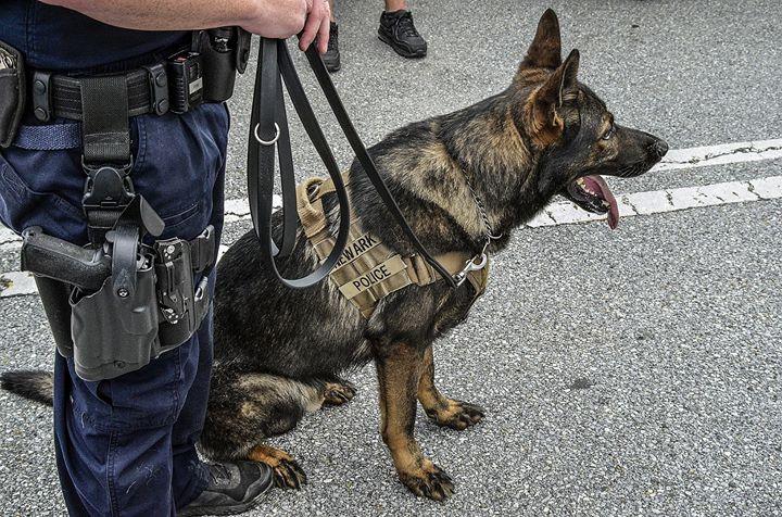 Newark Delaware Police Department cover
