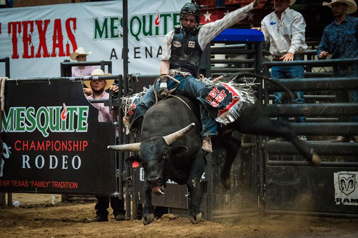 Mesquite Championship Rodeo cover