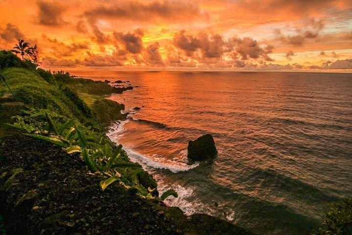 Maui Tour cover