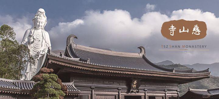 慈山寺 Tsz Shan Monastery cover