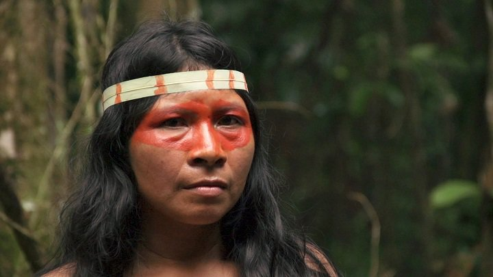 effect of deforestation on indigenous people