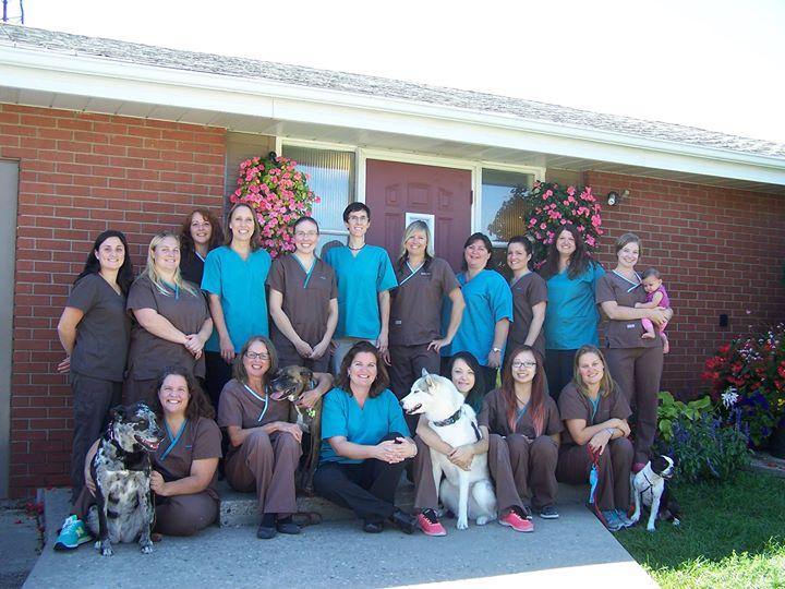 Snelgrove Veterinary Services cover